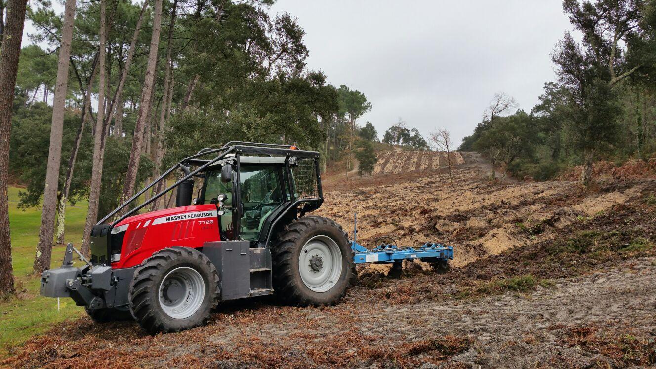 Repoblación forestal en Mouscardes (Francia)