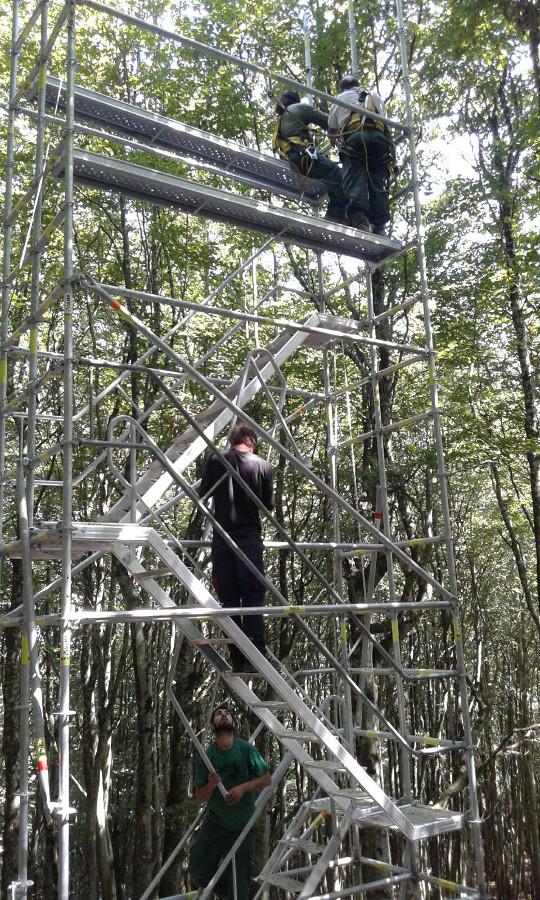 Construcción y mantenimiento de puestos de caza