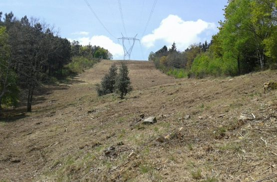 Mantenimiento línea eléctrica 2.3 400 KV Hernani Azpetia (AM VUtoria)