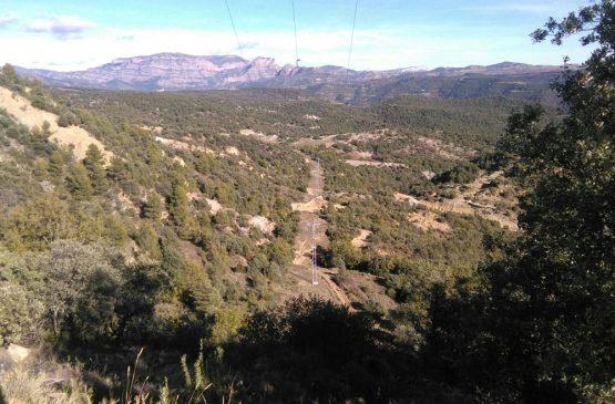 Mantenimiento línea eléctrica 2.4 Simple circuito Linea Aragon (Huesca)